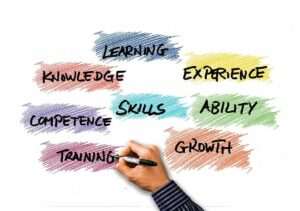What Skills Are Required for SEO